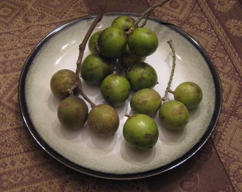 mystery_fruit.jpg