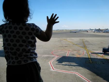 phoebe_airport.jpg