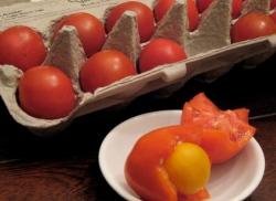 tomato_eggs2.jpg
