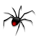 spider_1.png