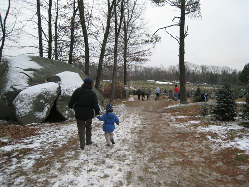 My mother and Phoebe head out to find a tree.