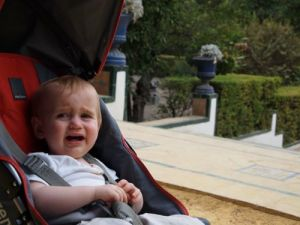 Theo tiring of the gardens of Alcazar in Sevilla.