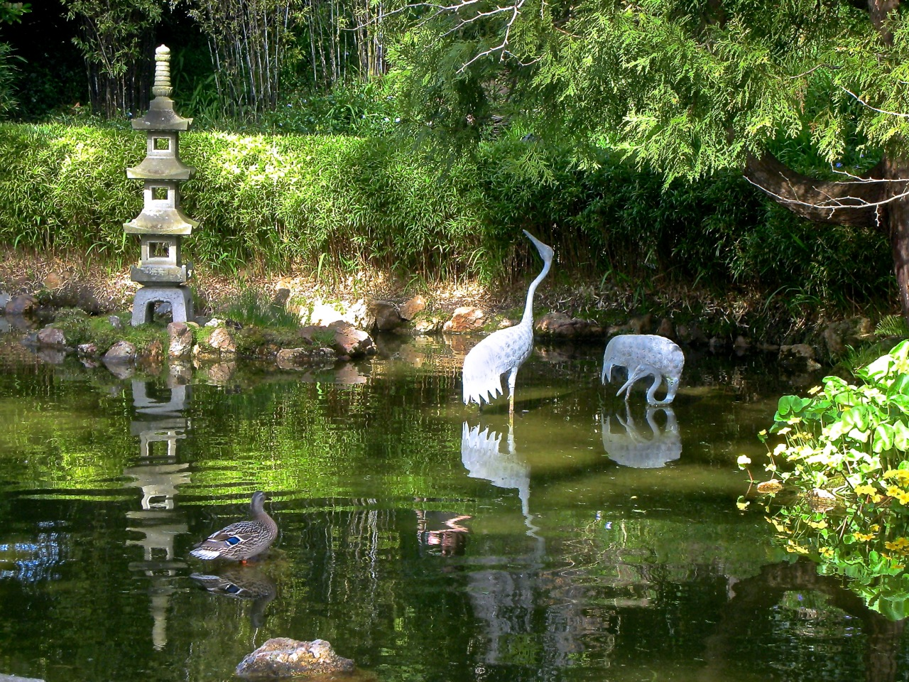 Sculpture collecting tokens for Koi pond japanese tea garden san francisco