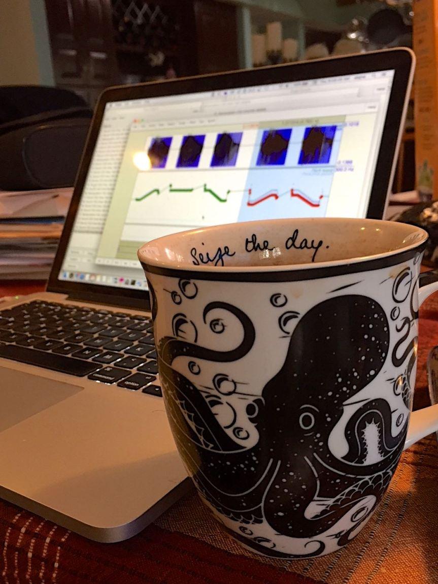 seize-the-day-mug
