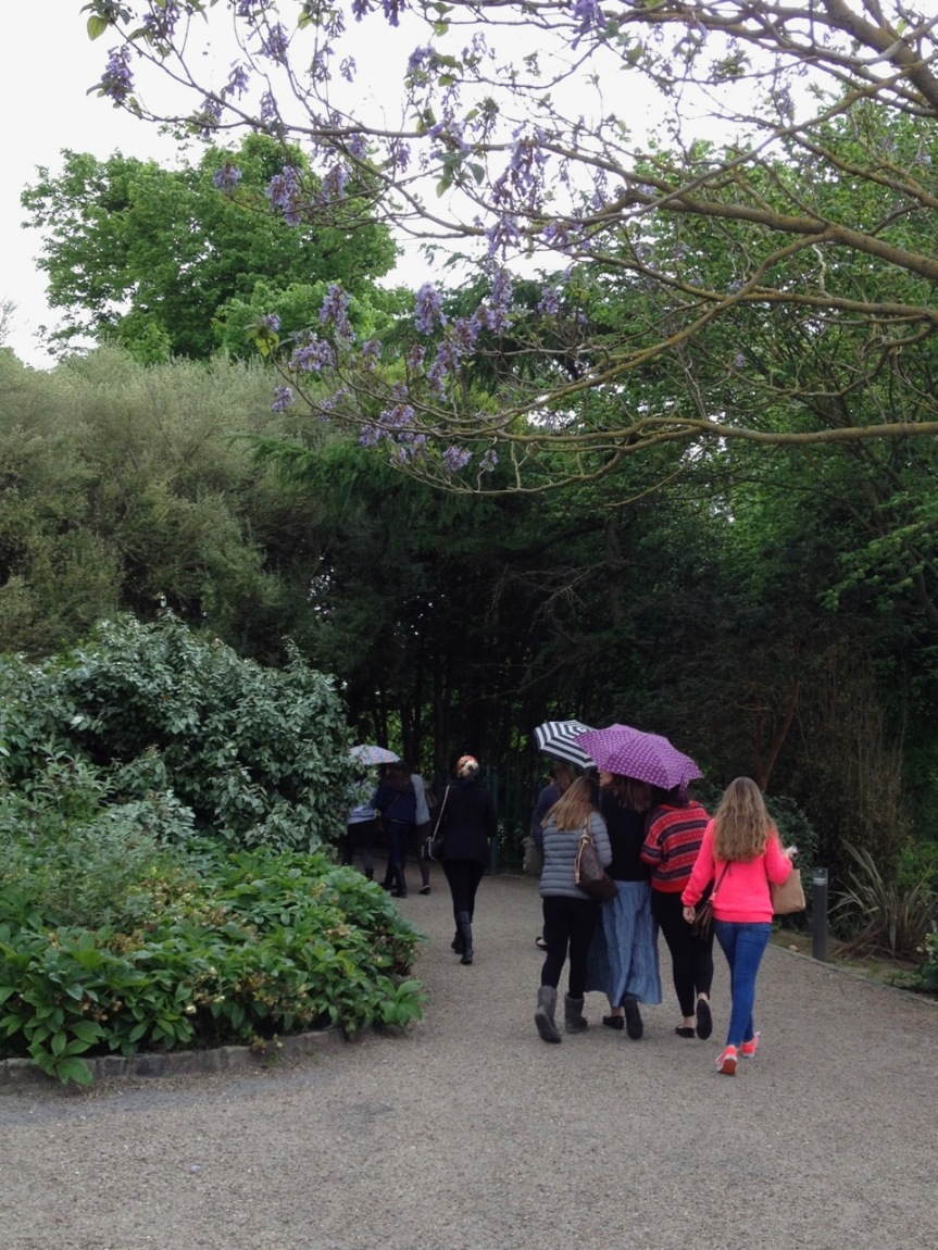 umbrellas-malahide